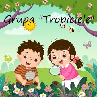 Grupa tropiciele